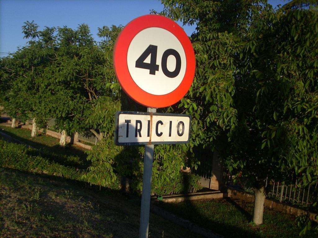 Tricio
