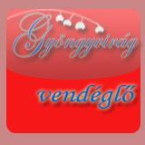 Gyvv logo